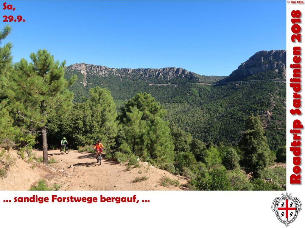 Forstwege bergauf