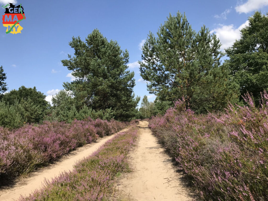 Kilometerlange sandige Wege durch die Heide.