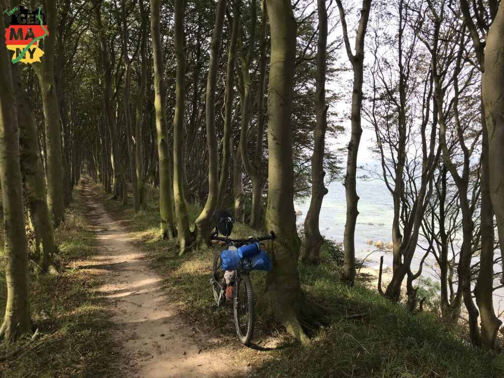 Trails entlang des Kliffs an der Nordküste.